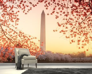The Washington Monument and Cherry Blossom Wall Mural Wallpaper Wall Murals Wallpaper