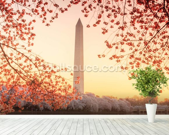 The washington monument and cherry blossom wallpaper wall for Cherry blossom mural works
