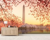The Washington Monument and Cherry Blossom wall mural living room preview