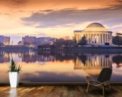 The Jefferson Memorial mural wallpaper kitchen preview