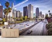Downtown LA Freeway wall mural living room preview