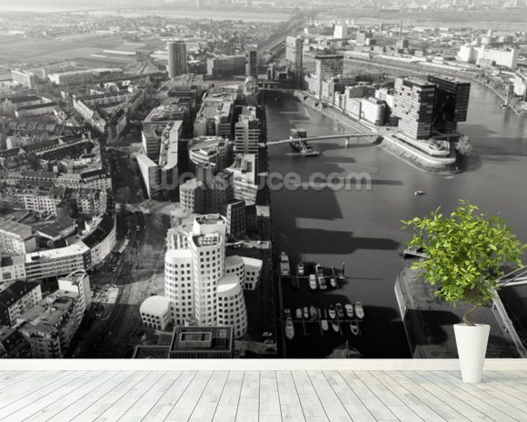 Düsseldorf Ariel View in Black & White wall mural room setting