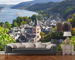 Rhine Valley wall mural