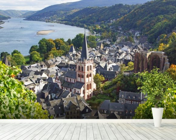 Rhine Valley wall mural room setting