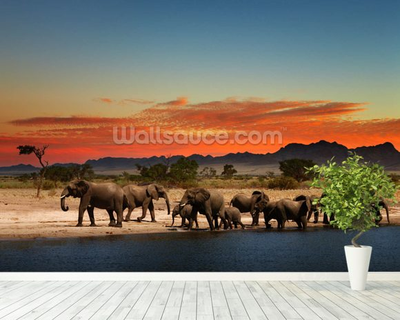 African elephants wallpaper wall mural wallsauce for Elephant wall mural