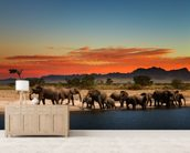 African Elephants wallpaper mural living room preview