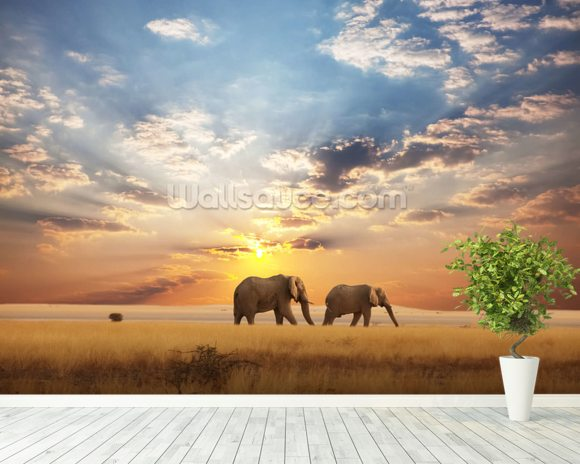 Elephant wallpaper wall mural wallsauce for Elephant wall mural