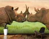 White Rhinos wall mural kitchen preview