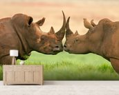 White Rhinos wall mural living room preview