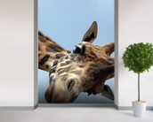 Giraffe mural wallpaper in-room view