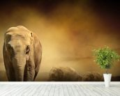Sepia Elephants mural wallpaper in-room view