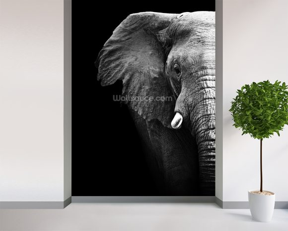 Elephant close up wallpaper wall mural wallsauce for Elephant wall mural