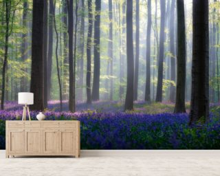 Blue Bell Forest wallpaper mural