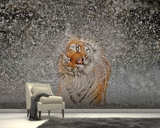 Tiger Splash wall mural
