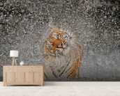 Tiger Splash wall mural living room preview