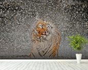 Tiger Splash wall mural in-room view