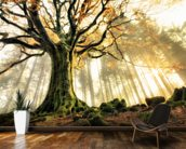 Tree Giant wallpaper mural kitchen preview