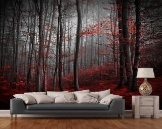 Red Carpet Forest Wallpaper Mural Wall Murals Wallpaper