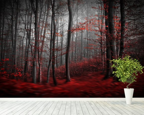 Red Carpet Forest wallpaper mural room setting