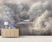 Winter Trees wall mural living room preview