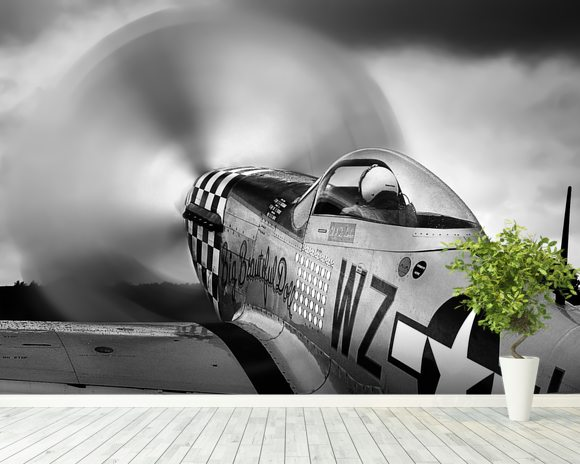 p-51 Fighter wall mural room setting