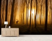Forest Stag mural wallpaper living room preview