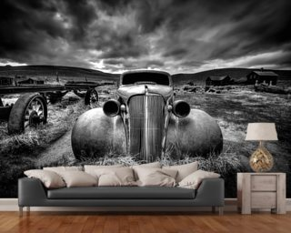 Wall Paper Mural photo wallpaper & photograph wall murals | wallsauce usa