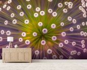 Colours mural wallpaper living room preview