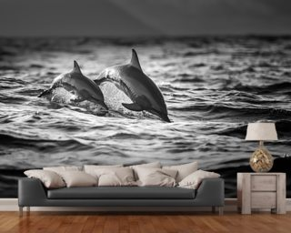 Dolphins wallpaper mural