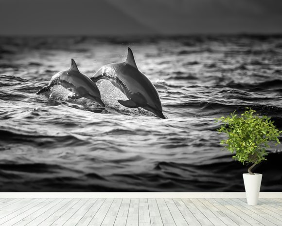 Dolphins wall mural dolphins wallpaper wallsauce for Dolphin mural wallpaper