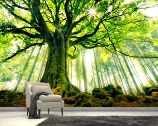 Mother Tree Wall Mural Wallpaper Part 97
