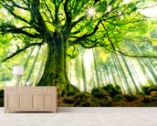 Mother Tree mural wallpaper living room preview