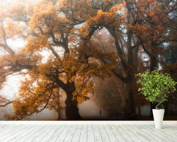 Autumn Story wall mural room setting