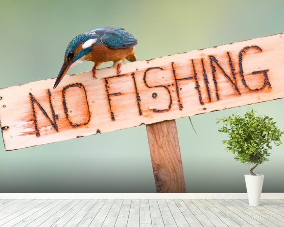 No Fishing mural wallpaper room setting