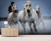 Cowboy Horses wall mural living room preview