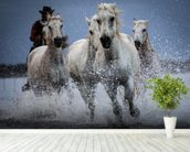 Cowboy Horses wall mural in-room view
