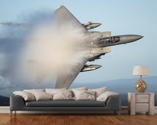 F18 Fighter wall mural