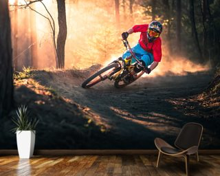 Mountain Biker wall mural