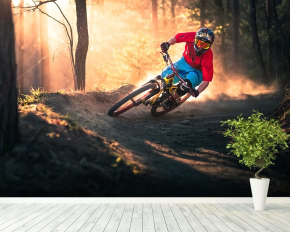 Mountain Biker wall mural room setting