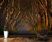 Tree Avenue mural wallpaper kitchen preview