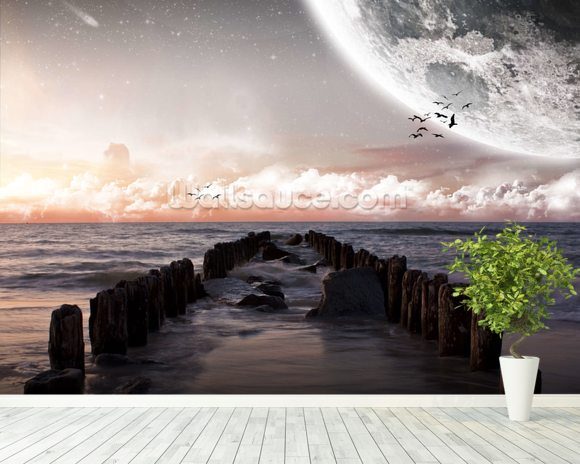 Planet landscape view from a beach wall mural room setting