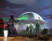 UFO Abduction wall mural kitchen preview