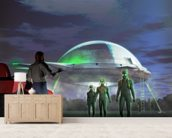 UFO Abduction wall mural living room preview