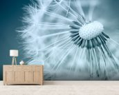Dandelion wall mural living room preview