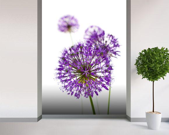 Beautiful Allium Flowers Wallpaper Wall Mural Wallsauce Usa