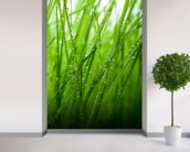 Grass mural wallpaper in-room view