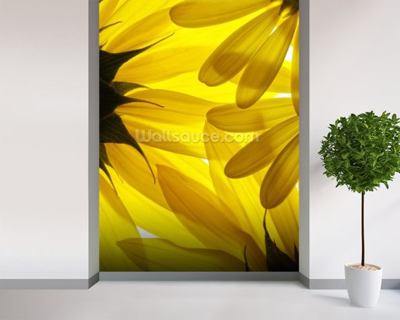 Yellow Flowers wallpaper mural room setting