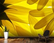 Yellow Flowers wallpaper mural kitchen preview