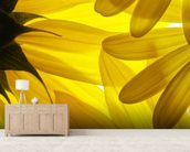 Yellow Flowers wallpaper mural living room preview