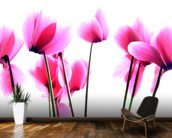 Cyclamen wall mural kitchen preview